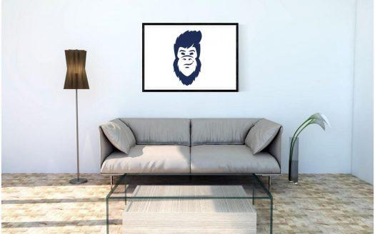 appartement-maison-location-vente-design-decoration